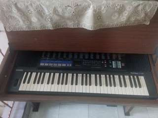 Organ Casio