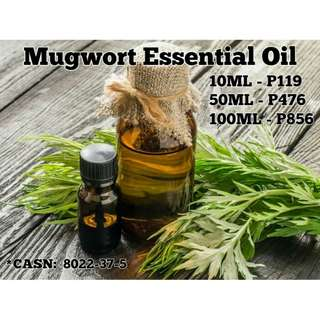 Mugwort Essential Oil (Pure Organic Essential)