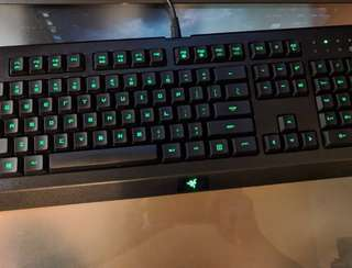 Razer Cynosa Pro Blackwidow Chorma Deathstalker Keyboard