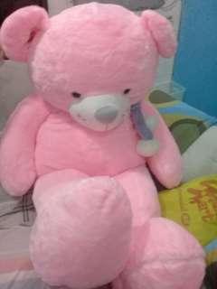 BRANDNEW!!!Cute huge PINK teddy bear with complete plastic
