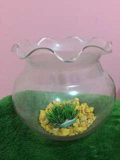 Aquarium Bulat