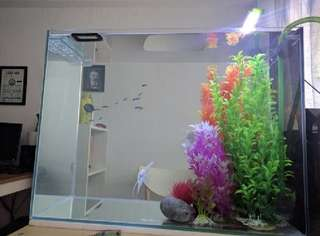 Fish tank glass