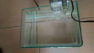 🚚 小魚缸(擺飾物品)
