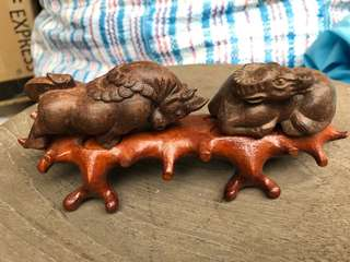 Animal made in solid wood