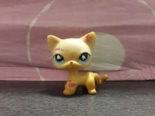 Littlest pet shop (LPS) Shorthair Cat