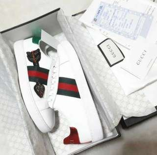 GUCCI ACE SNEAKERS 👟