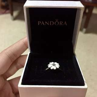 Pandora White Primrose Ring (authentic)