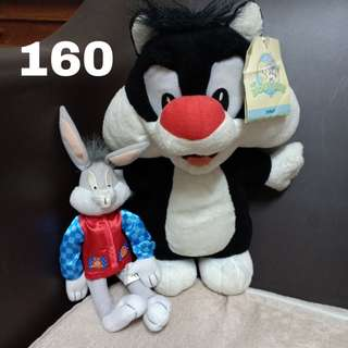 Sylvester set