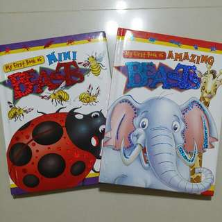 My First Book Of Mini Beasts, Amazing Beasts