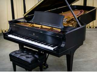 Piano lessons for (5-80)