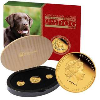 lunar year of dog gold