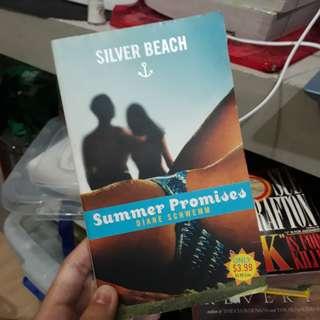 Silver Beach Summer Promises by Diane Schwemm