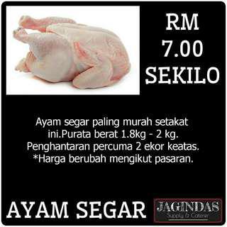 Ayam Segar