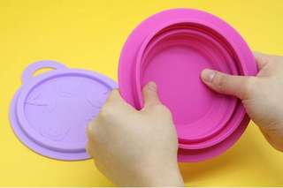 Collapsible Bowl in Pink