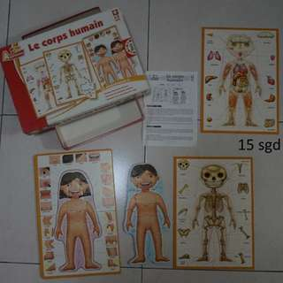 Puzzle the human body ( French)