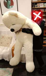 GIANT stuffed teddy