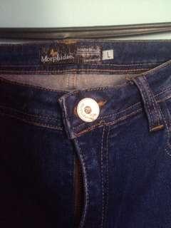 Jeans morphidae