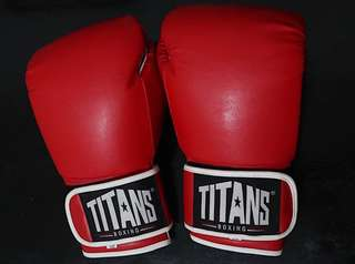 Titans Training Boxing Gloves 12oz