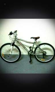 Raleigh M15