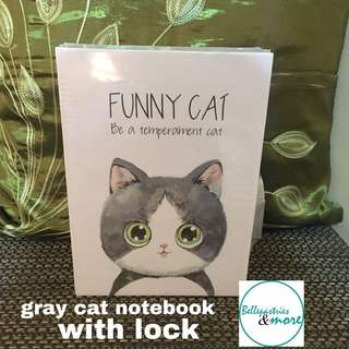 gray cat notebook with lock