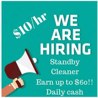 Standby Office Cleaner (Daily Pay)