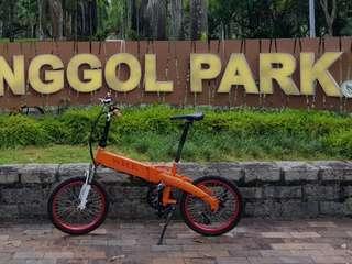 SRE foldable electric bike