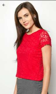 Red Lace Blouse (Brand New)