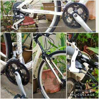 Hybrid Bicycle: DIAMONDBACK Insight 2.0  - Excellent Condition (Suitable for Ladies and Teens 👧 👫 )