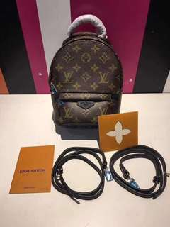 LV Palm Spring Mini