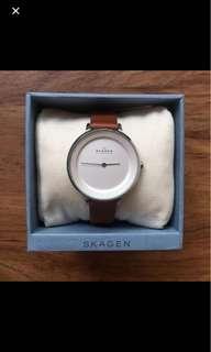 Skagen Brown Watch