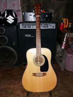 Custom Solid Wood Acoustic Guitar