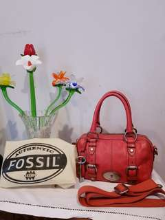 Authentic Fossil Maddox Small