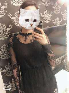 暗夜女巫 正韓 質感睫毛蕾絲長袖透膚洋裝(質感超好)