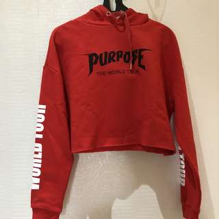 Purpose tour sweater