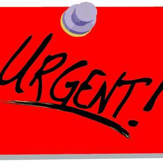 PACKERS NEEDED URGENT!!!