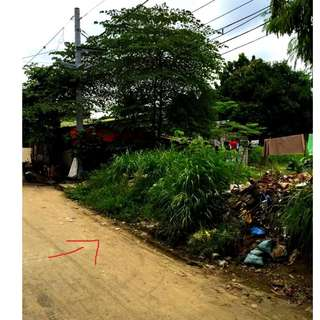 LOT FOR SALE in Teresa Rizal located within Subdivision