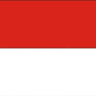 印尼 8 天 4G 無限上網