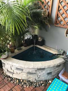 Beautiful water feature fish pond
