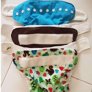 Soft Bums Cloth Diapering System