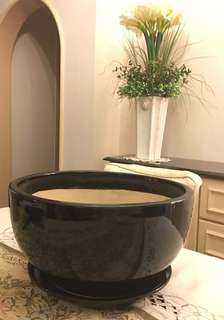 New black plant pot with plate