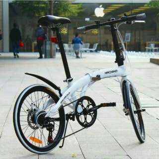 Bicycle - HACHIKO 20 Inch Foldable Bike Selling Only $220