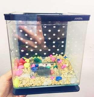 Marina Betta Fish Tank