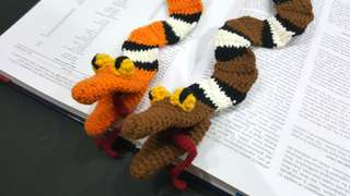 Snake bookmark/funny bookmark