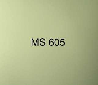 MS 605