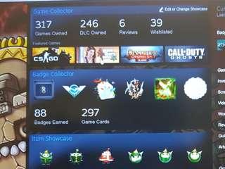 317 Games Steam Account