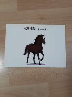 Chinese Flash cards 7