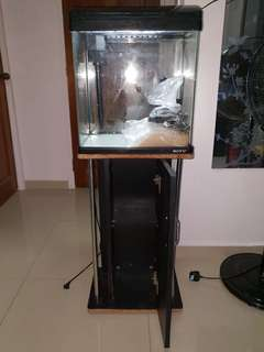 Full Set Fish Tank, 10 Gallon Curved (+$15 for stand) with additional FREE accessories