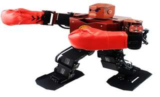 STEM Robot: Fighting Robot-2