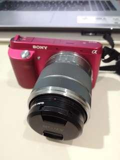 Sony camera NEX-F3 (2 lens)
