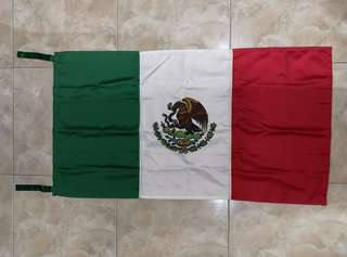 Hand Painted MEXICO Flag